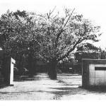 由良育英高校の歴史
