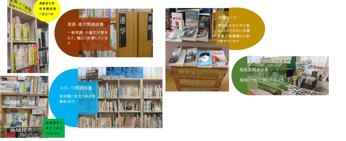 蔵書コレクション